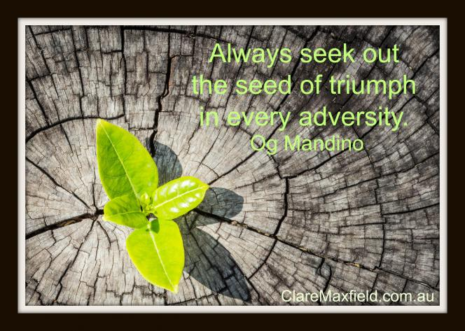 Always seek out the seed of triumph in every adversity