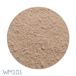 WM101